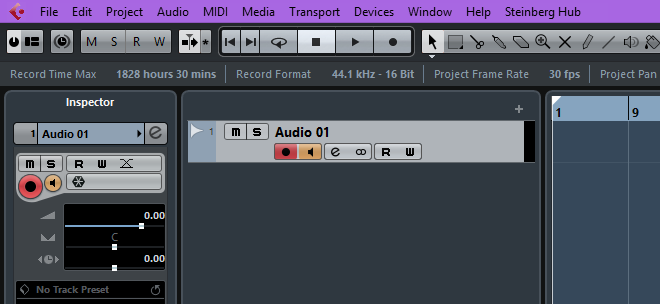 Audio track with Monitor option selected